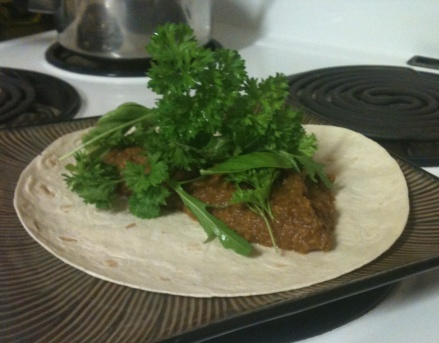 Em's Aduki Bean Dip Burritos